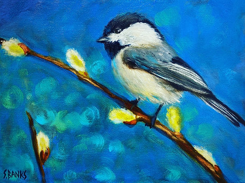 Chickadee on a Pussywillow