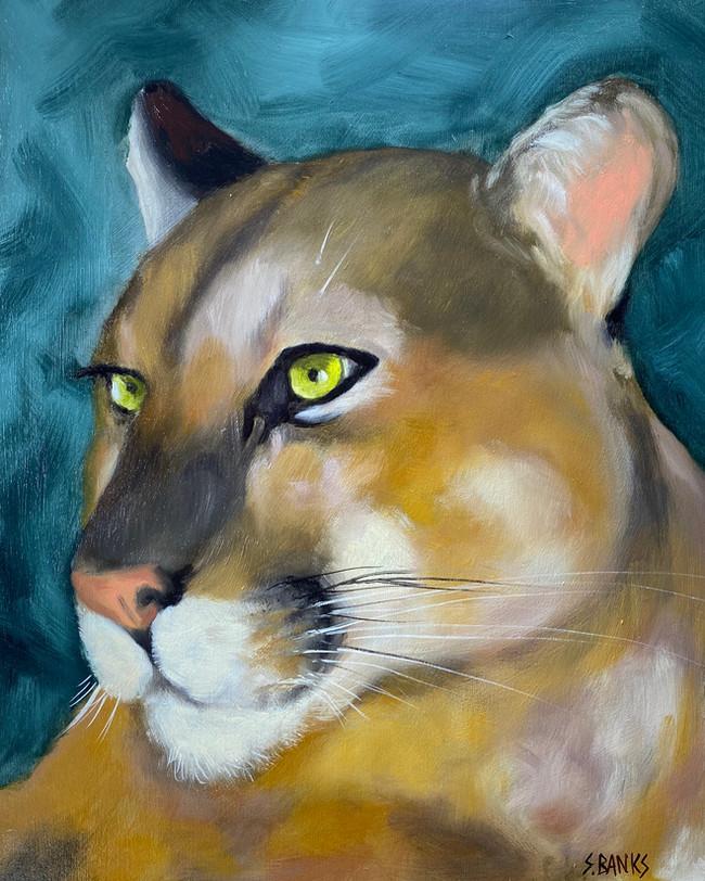 """Puma"""