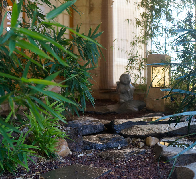 הגינה בכניסה למסעדה