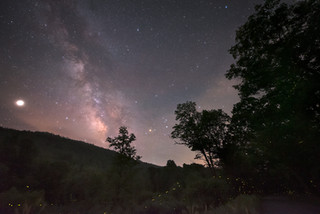 Gormania, West Virginia fire flies and Milky Way