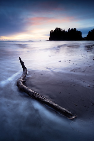 First Beach Olympic National Park