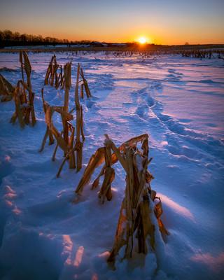 Snowy farmland sunset in Pennsylvania
