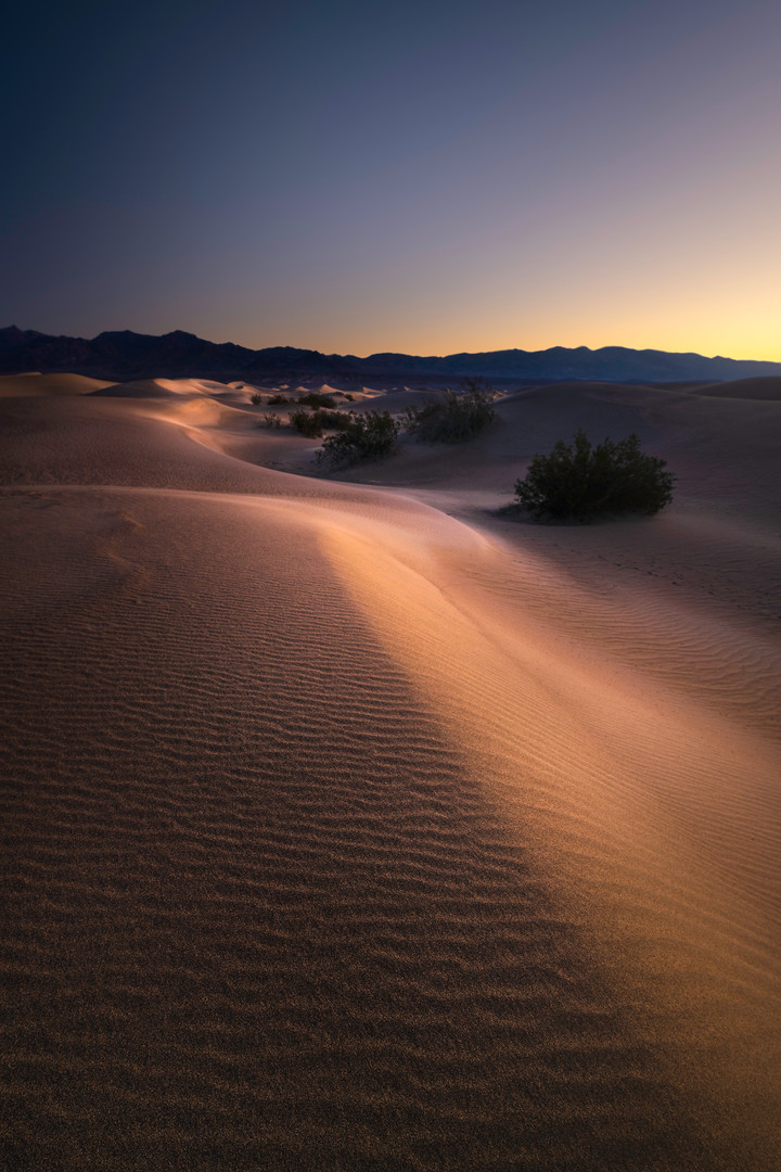 Death Valley Mesquite Dunes Sunrise