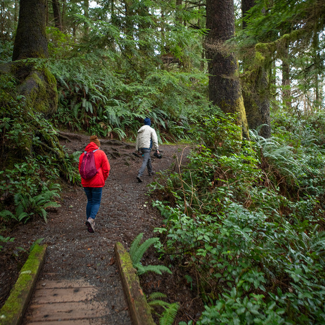 Hiking in Olympic National Park