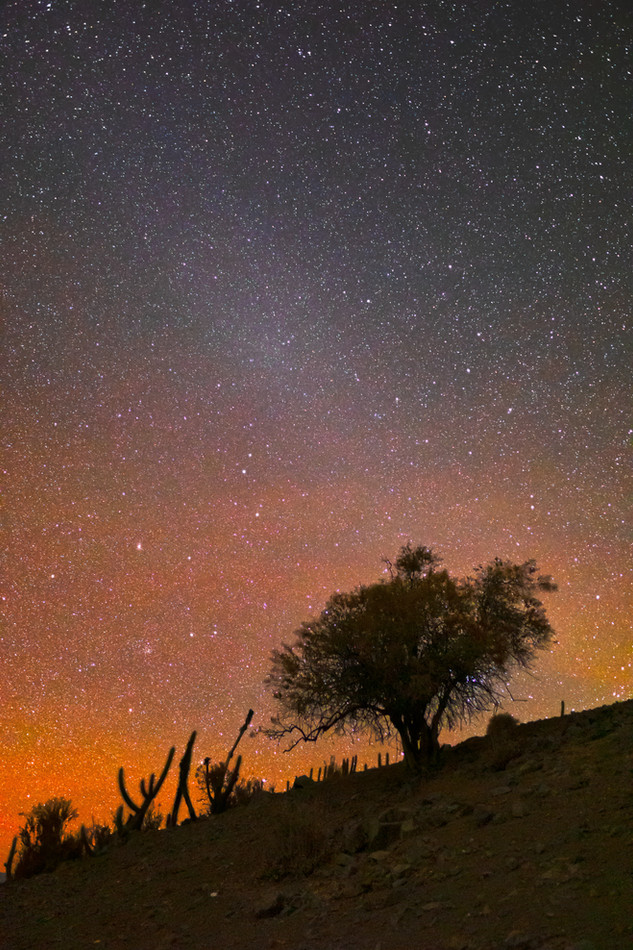 Gegenschein and red airglow from Chile