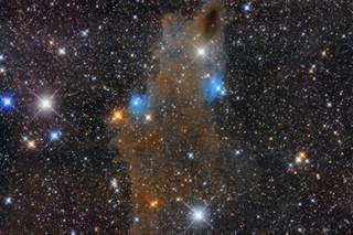 Dark-Shark Nebula