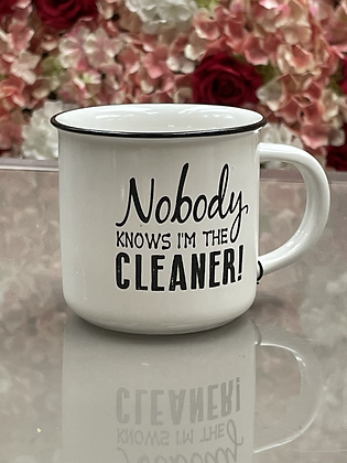 Nobody knows I'm the cleaner