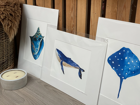 sea themed watercolour prints