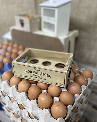 Vintage holds six egg crate