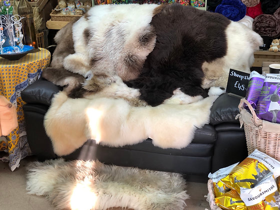 Sheep skins•super soft•totally gorgeous