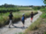 brescia nordic walking corsi