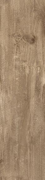 Castelvetro-Woodland-20x80-Oak.jpg