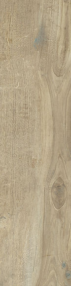 Castelvetro-Woodland-20x80-Elm.jpg