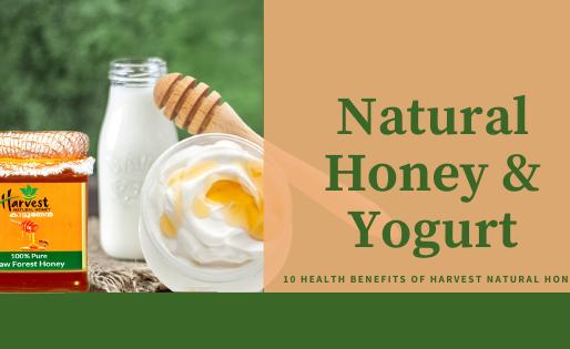 Harvest Natural Honey and Yogurt - probiotics