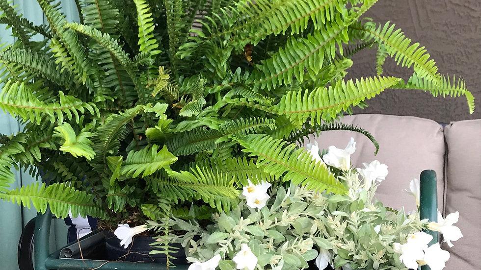 Metal green planter