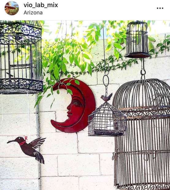 This large birdcage wass added to Violas collection.