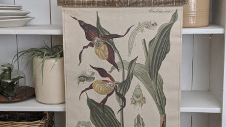 "Botanical wall hanging ""Orchidaceae"""