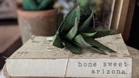 """""""home sweet arizona"""" oversized book bundle"""
