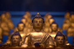 Buddha Siddartha