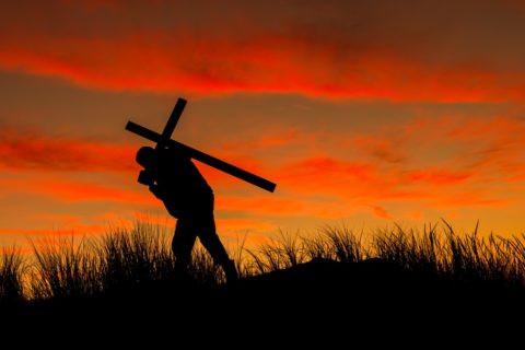 XXIII Domingo del Tiempo Ordinario C