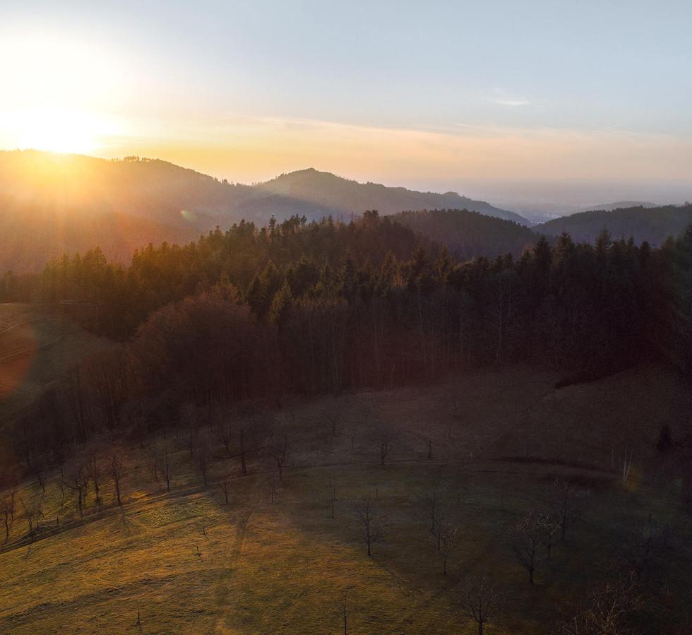 Blackforest Drohne 06-0122-HDR-Bearbeite