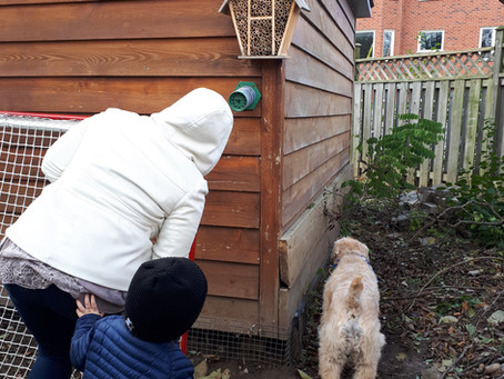 Why We Grow - I want my kids to know about the environment and their place in it