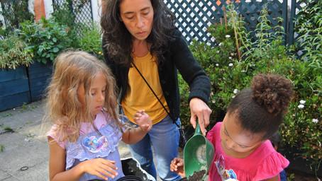 Planting seeds 2020