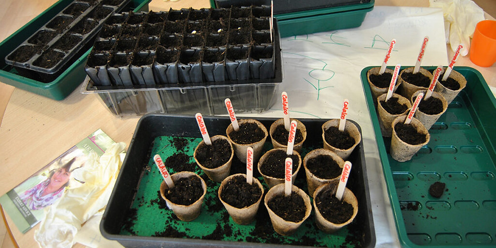 Growing together: Planting your seeds in February