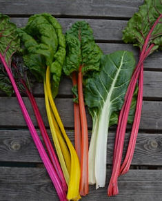 Multi-coloured 'rainbow' chard
