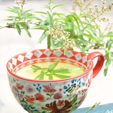 Herb-teas-workshop-1024x1024.jpg