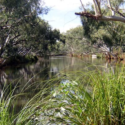 Billabong, Western Queensland
