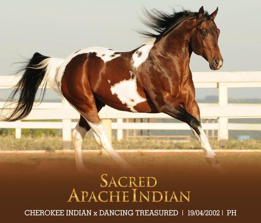 SACRED APACHE INDIAN
