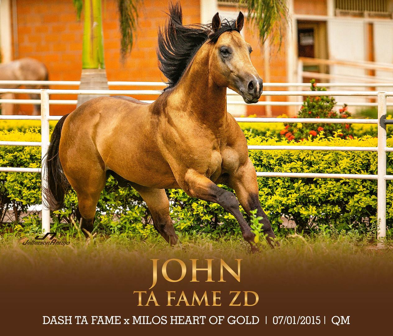 JOHN TA FAME ZD