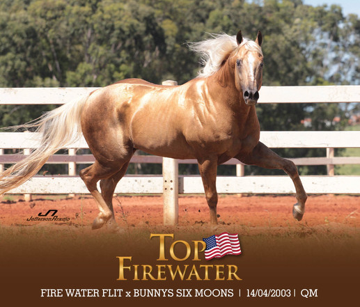 TOP FIREWATER