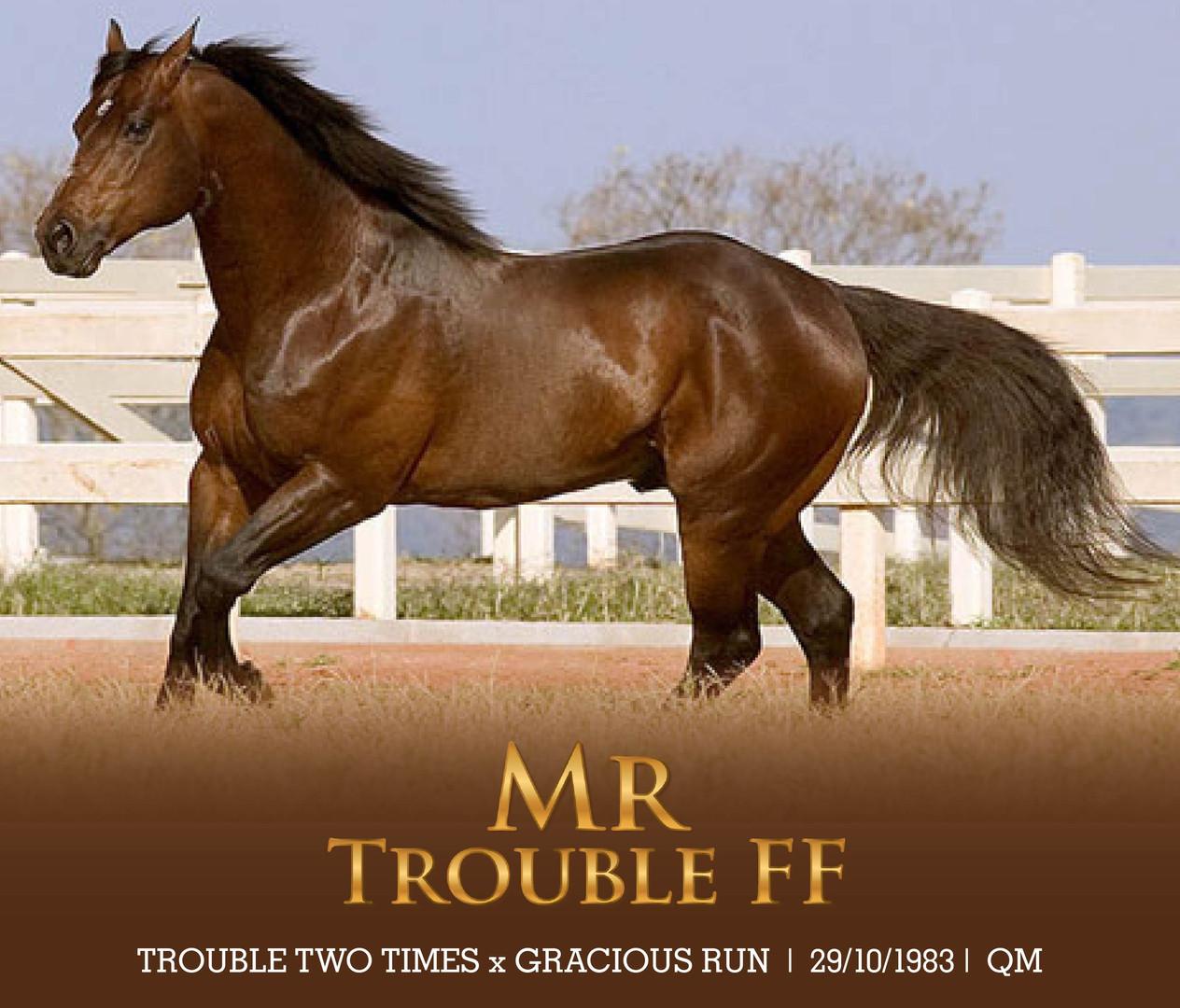MR TROUBLE FF