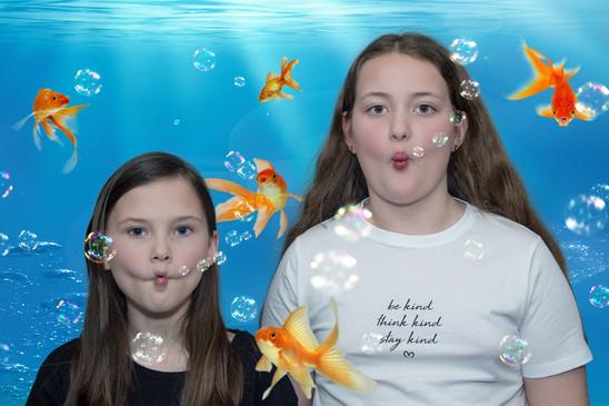 nfishbubbles2.jpg