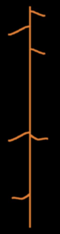 lineatemporale_Tavola disegno 1.png