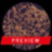mappine2_Tavola disegno 1.png