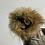 Thumbnail: Owl kachina by muth
