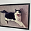 Thumbnail: Fearless cat