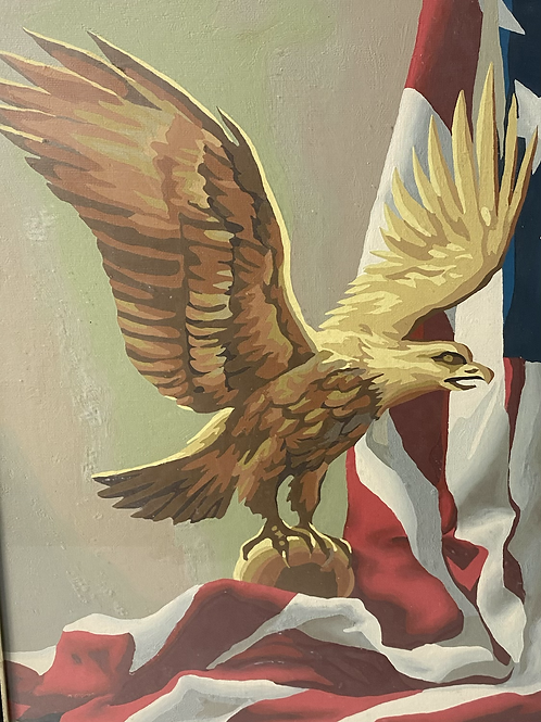American Bald eagle (paint by number)