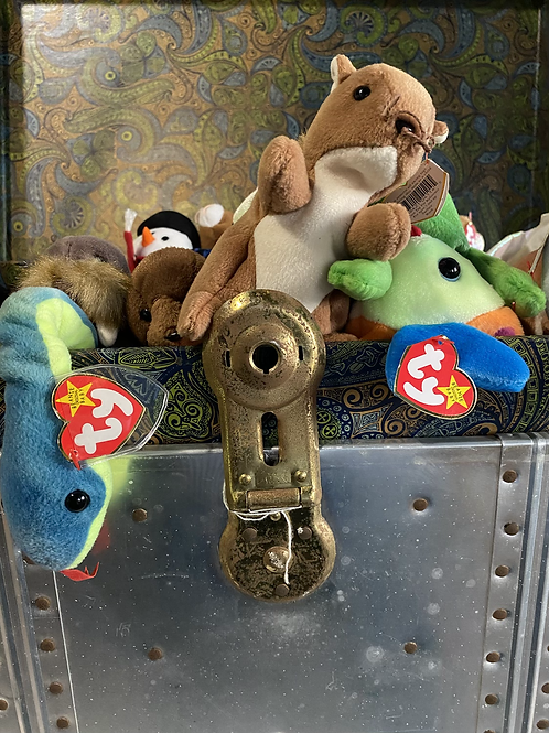 Beanie baby Treasure Chest (Go Fund Me Contest)