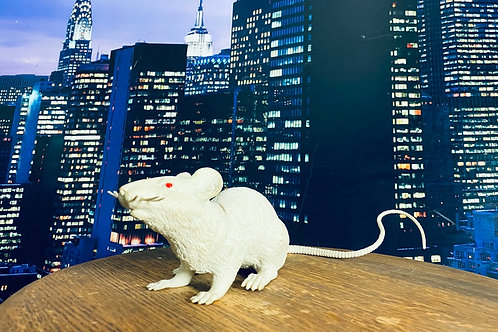 Small Plastic white Rat