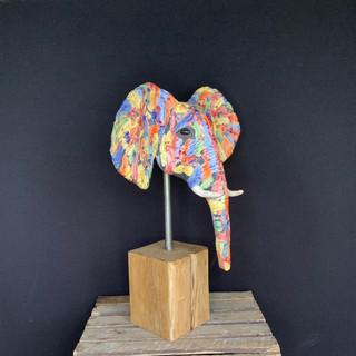 Tête d'éléphant multicolore