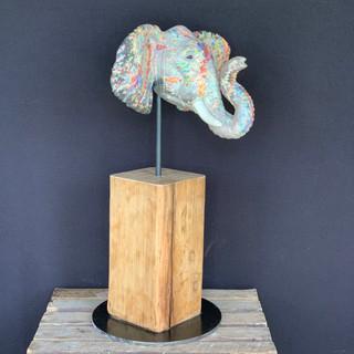 tête d'éléphant coloré