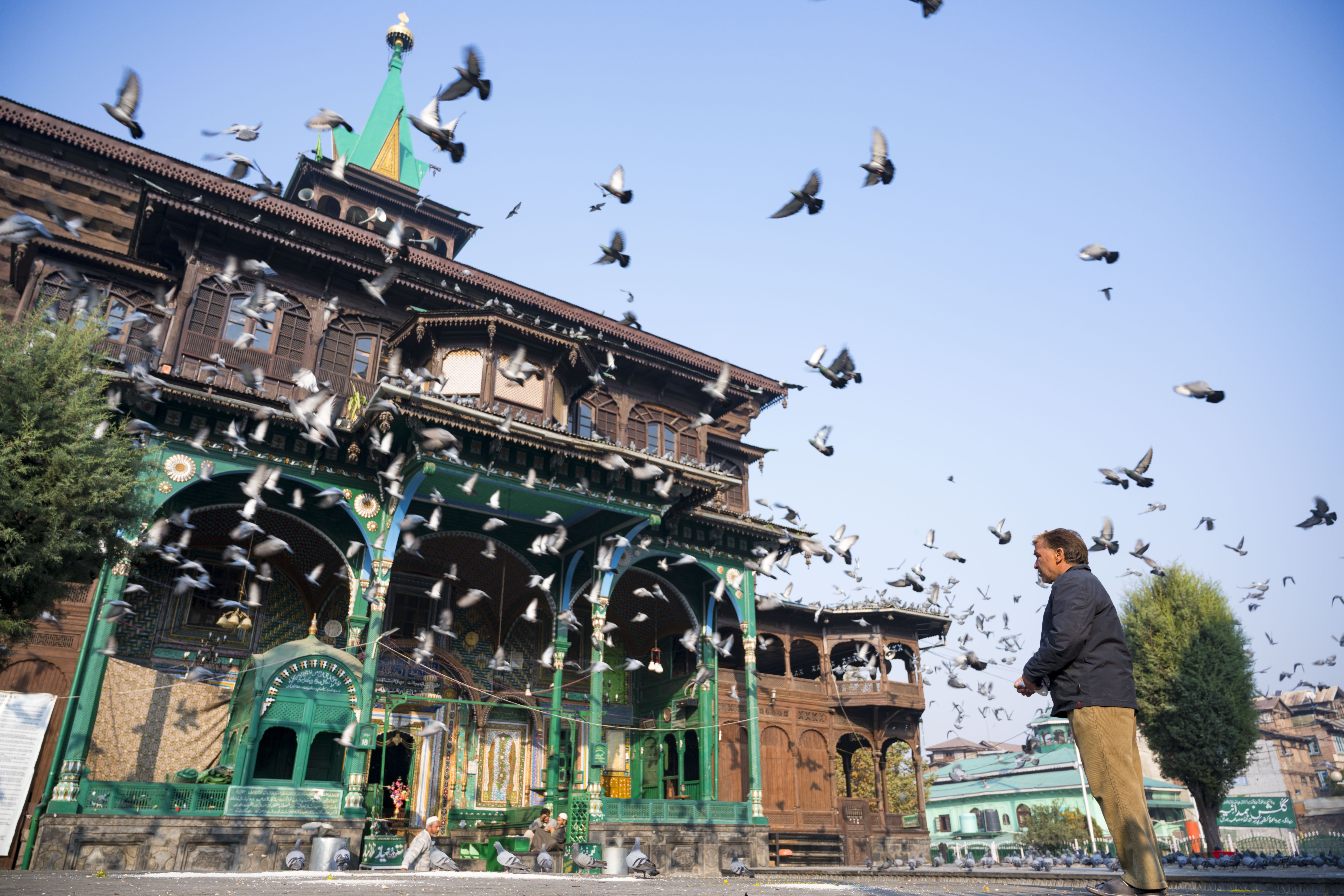 Old Mosque and Flying Pigeons