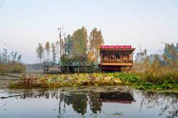 Boathouse on Dal lake of Srinagar