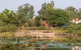 Uttar Pradesh Unknown Pond
