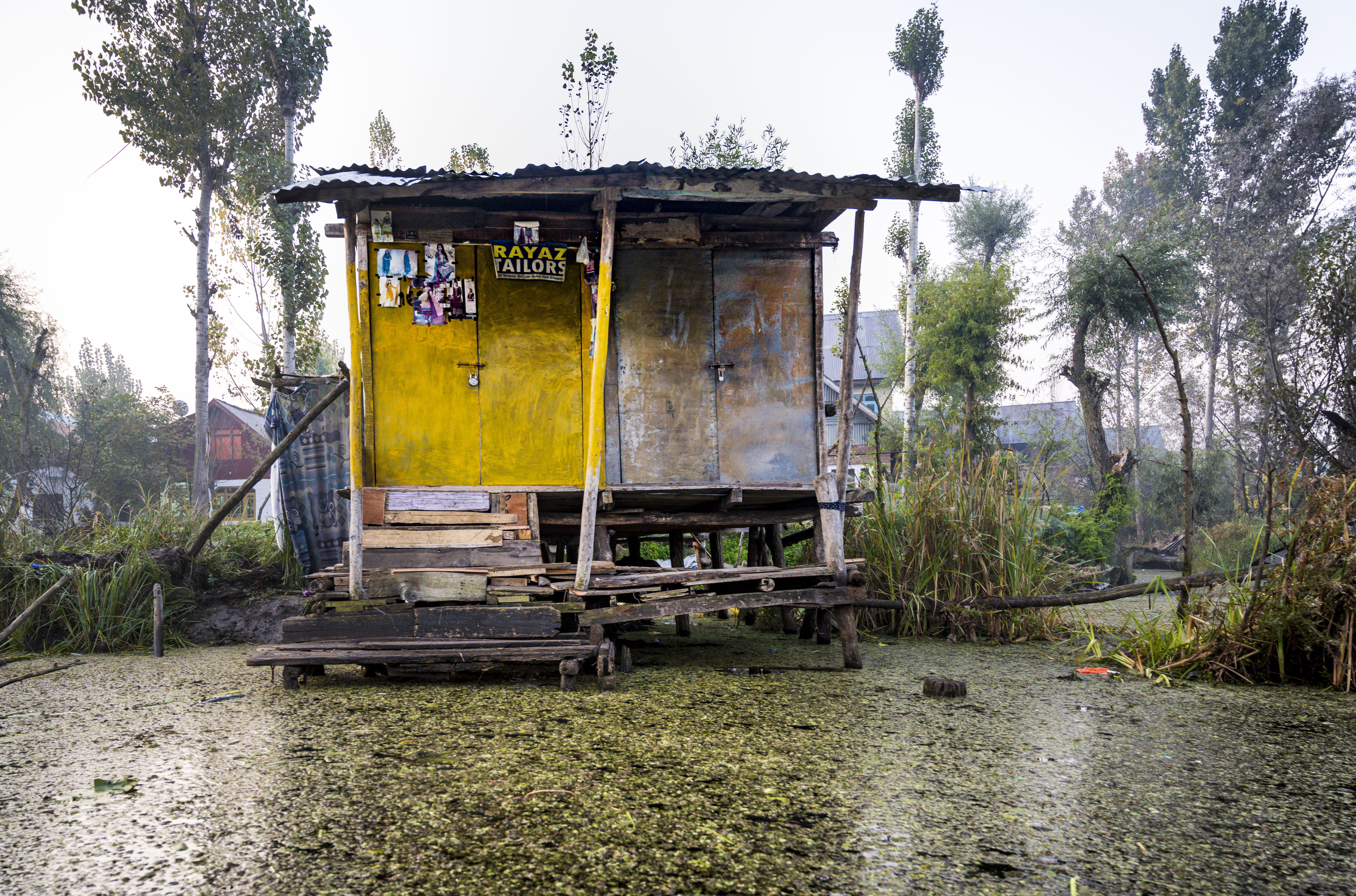 Boathouse on Dal lake of Srinagar