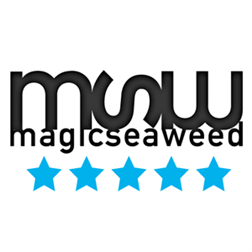 Magic Sea Weed